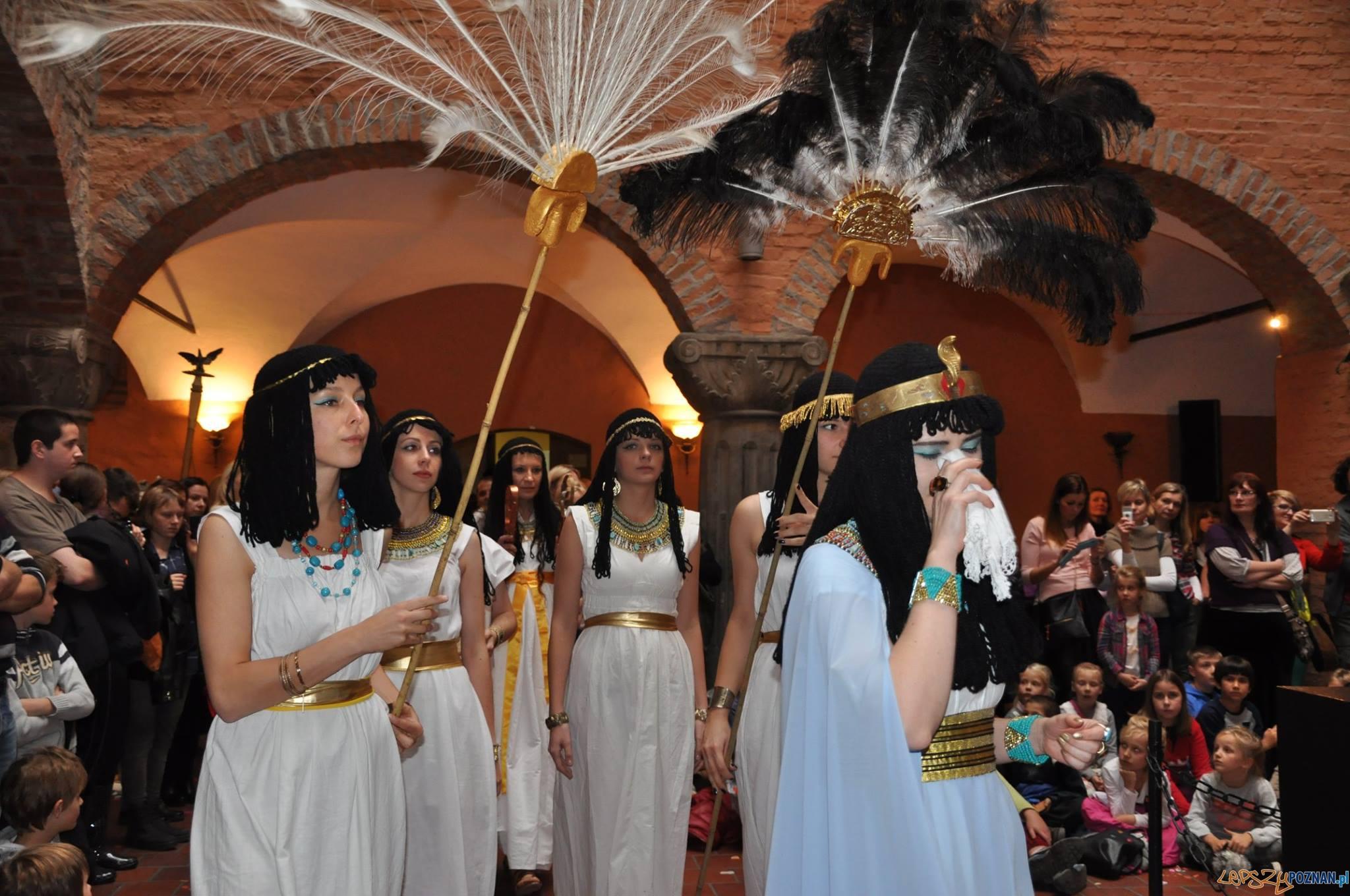 Imprezy edukacyjne w Muzeum Archeologicznym w Poznaniu